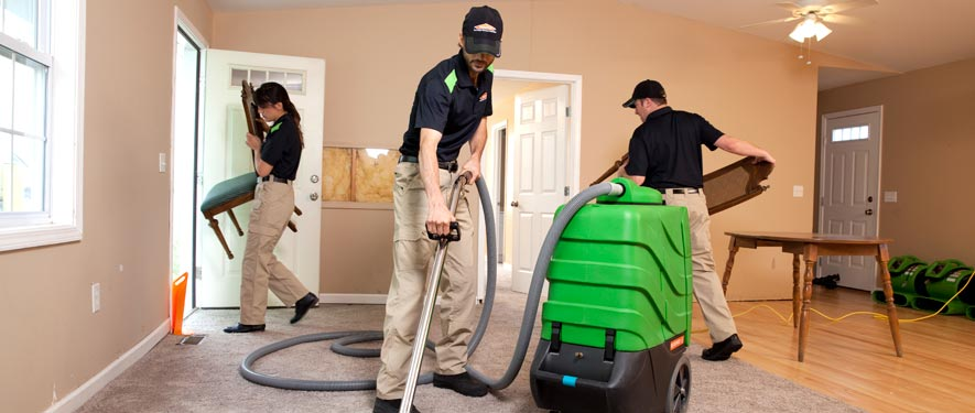 Lincoln Park, MI cleaning services